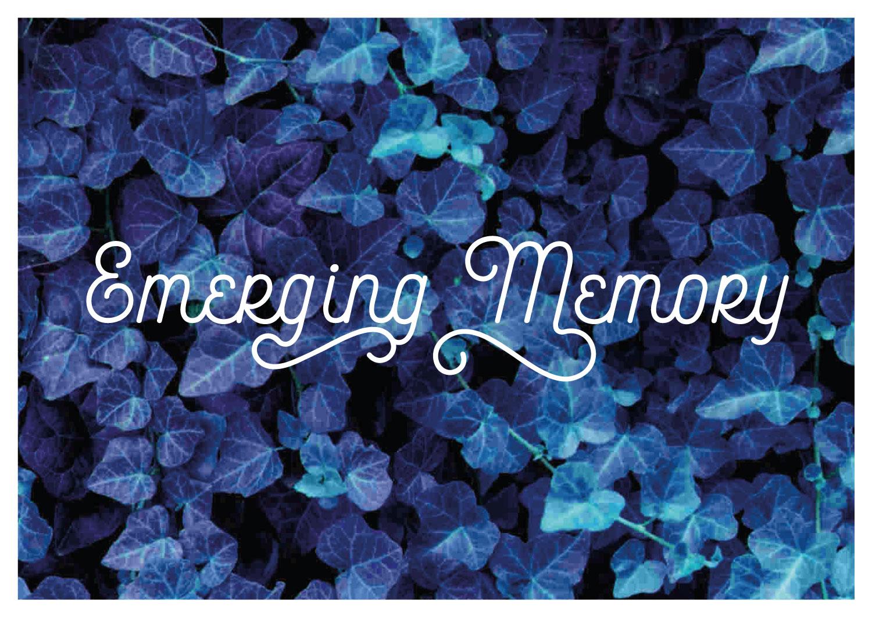 Emerging Memories broedplaats bogota meurkens en meurkens