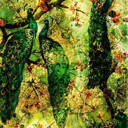 wallpaper woods 2