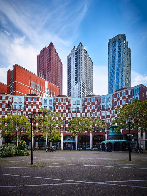 THE HAGUE FOR SELF-PROMOTION